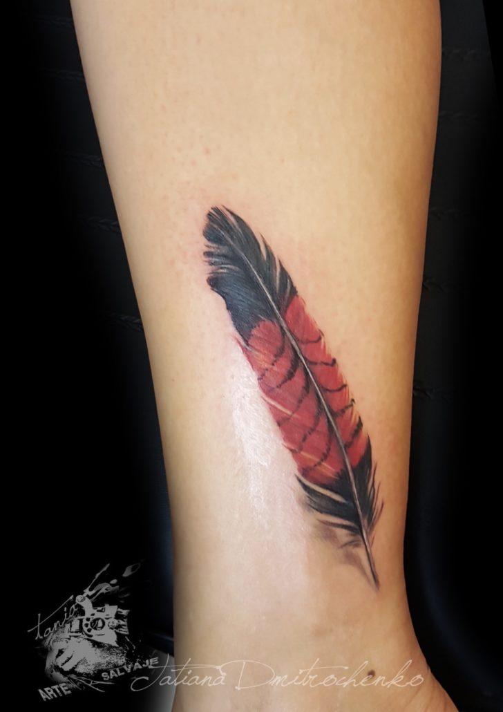 tatuajes pequeños de plumas 3d a color valencia