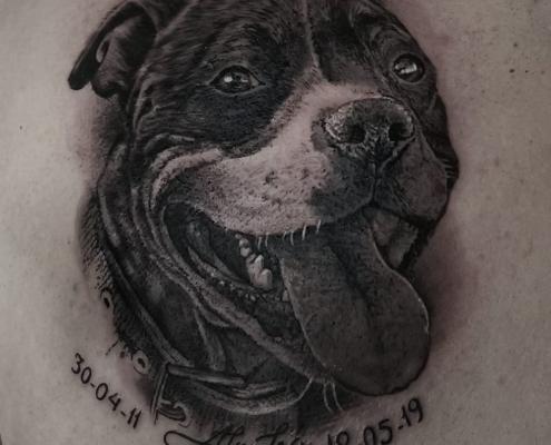 Tatuaje Perro Hombro