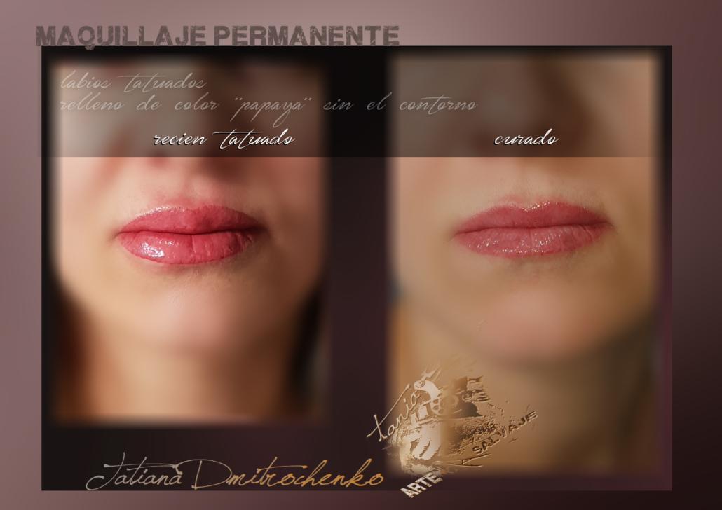 micropgmentacion de labios efecto pintalabios pintado relleno perfilado contorno valencia 1 (2)