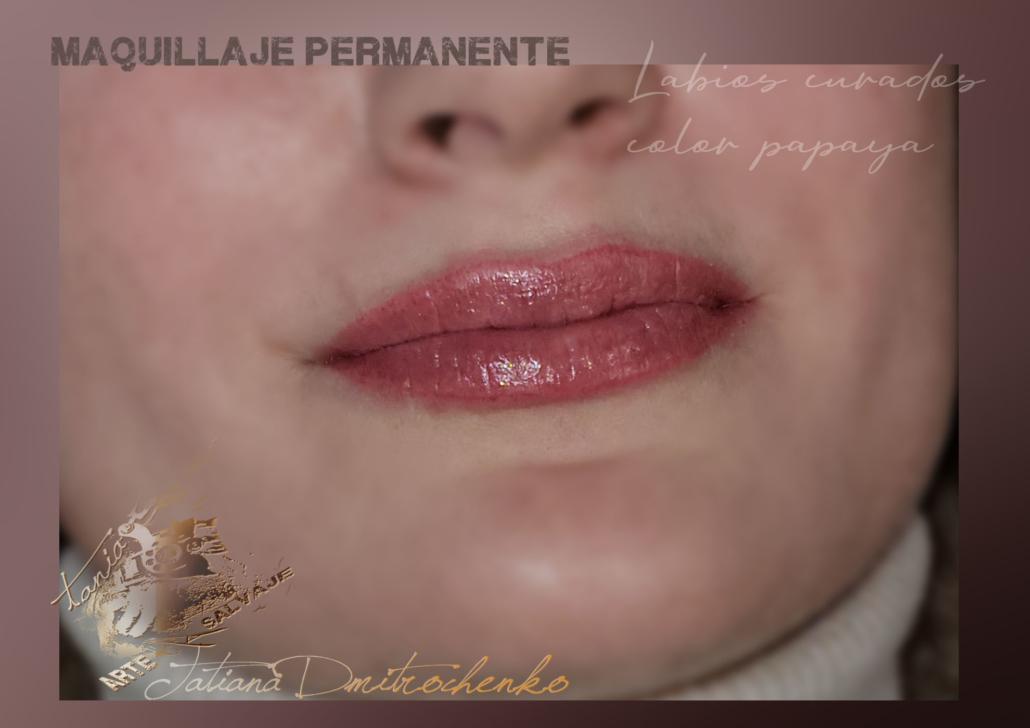 micropgmentacion de labios efecto pintalabios pintado perfilado contorno valencia (3)