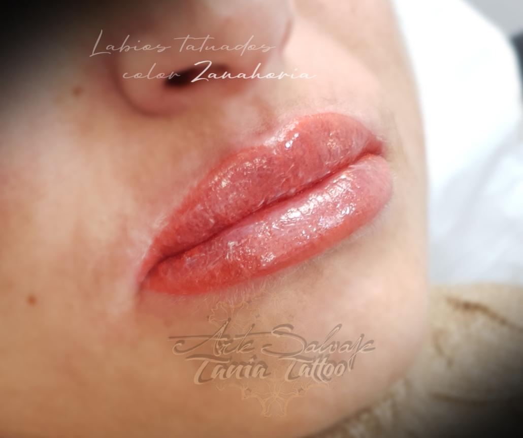 micropigmentacion de labios rellenos efecto pintados en valencia zanahoria alina
